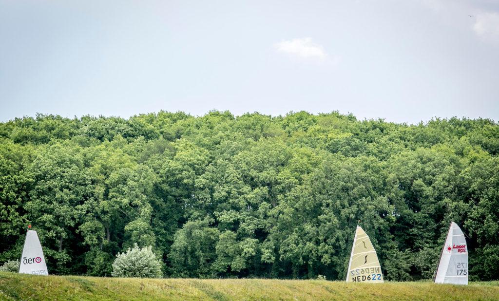 Rijnrace